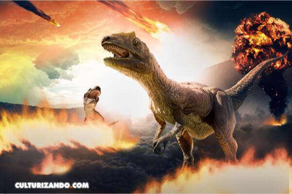 La vida se recuperó en 700.000 años donde impactó el asteroide que acabó con los dinosaurios