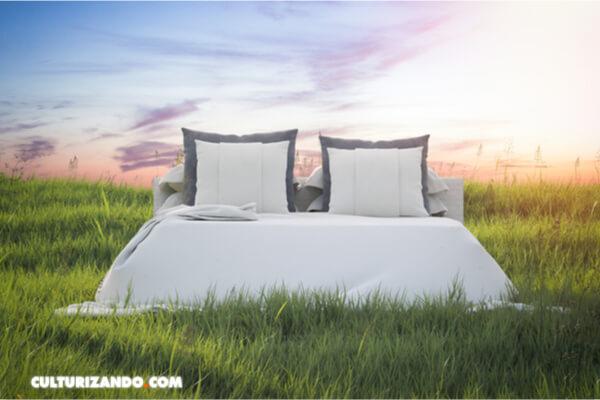 Los humanos usaban camas de hierba hace 200.000 años