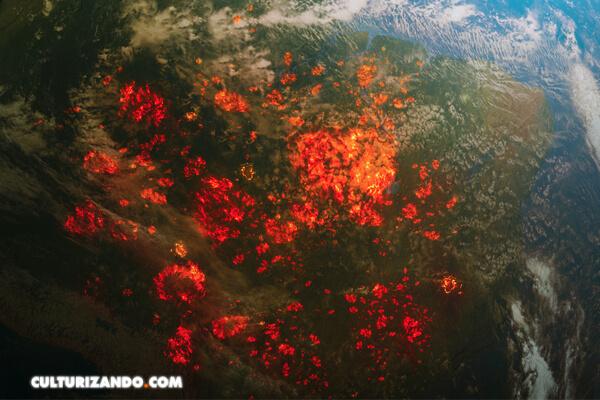 Crear paisajes menos inflamables reduciría hasta un 50% el área quemada en los próximos 30 años