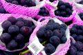 ¿Conoces el peculiar mercado de frutas de Japón?
