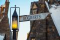 Harry & the Potters la banda más mágica que podrías escuchar