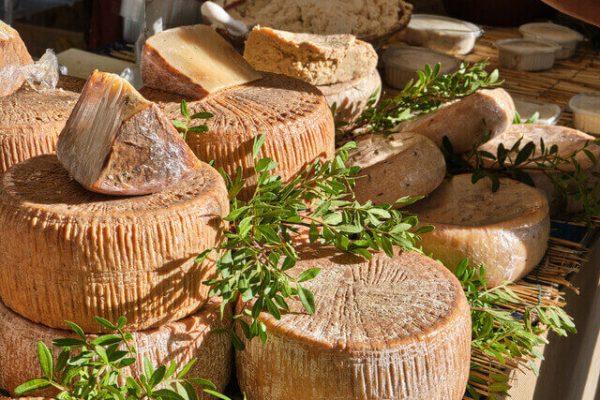 Casu marzu: el excéntrico queso italiano prohibido