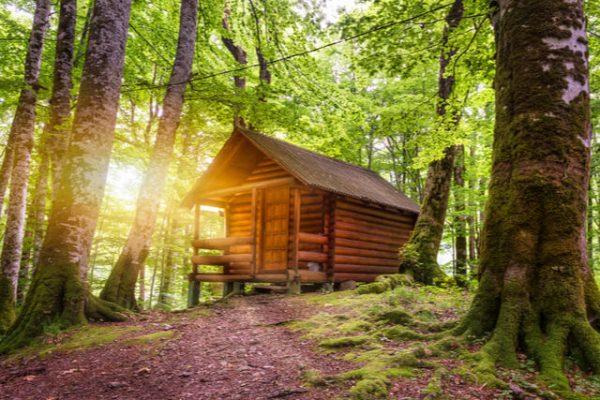 Tener una cabaña de madera tiene sus beneficios ¡Conócelos!